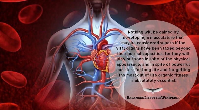 vital organs health