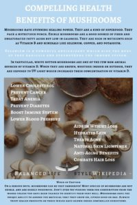 Compelling Health Benefits Of Mushrooms