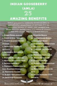 25 Amazing Benefits Of Indian Gooseberry (Amla)