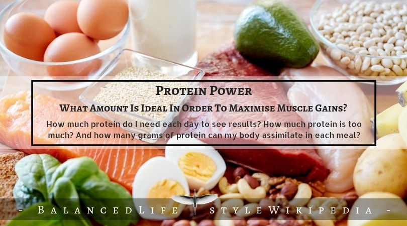 protein for growth