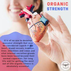 Organic Strength